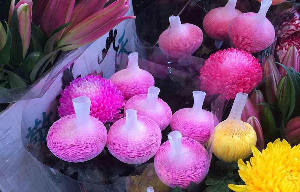 flower net application