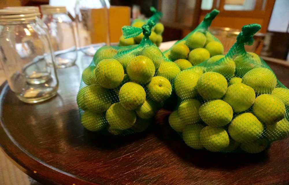 Fruit-Net