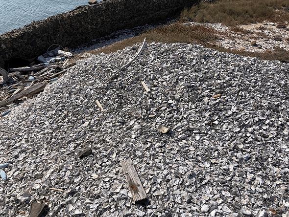 廢棄牡蠣殼×水泥3D列印機 (13)