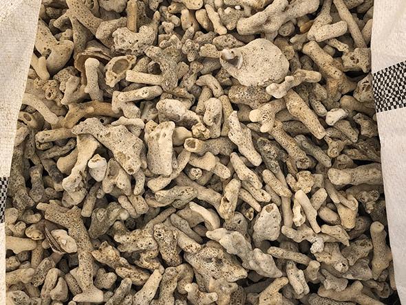 廢棄牡蠣殼×水泥3D列印機 (18)